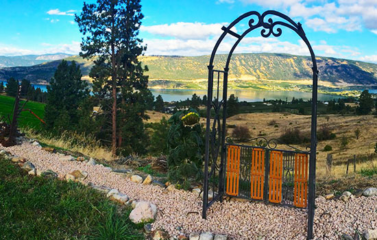 Welcome to the view out the back of Country Ridge B&B in the Okanagan