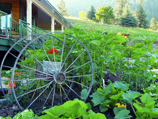 Summer garden bed at Country Ridge  B&B in the Okanagan Valley BC